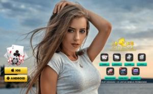 IDN Poker Situs Di INDONESIA Yang Dimiliki IDNPlay