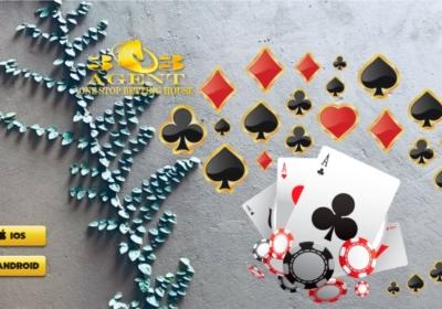 Situs Poker Online Teraman IDN Poker Terbaru